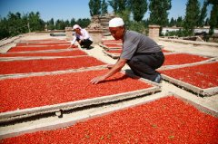 The Process to Make Dried Goji Berries