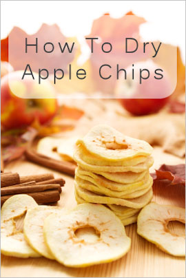 How to Dry Apple Chips