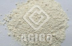 Introduction of Dehydrated Garlic Powder Production