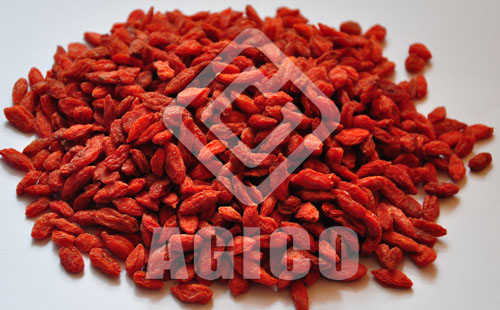 Where and How to Buy the Best Dried Goji